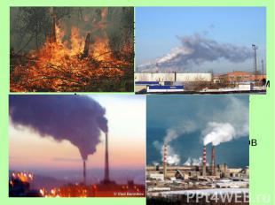 Под охраной окружающей среды понимают прежде всего сохранение в неприкосновеннос