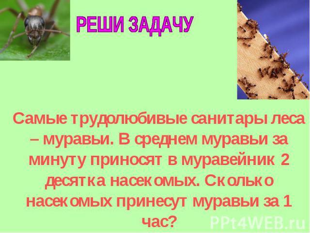 РЕШИ ЗАДАЧУСамые трудолюбивые санитары леса – муравьи. В среднем муравьи за минуту приносят в муравейник 2 десятка насекомых. Сколько насекомых принесут муравьи за 1 час?
