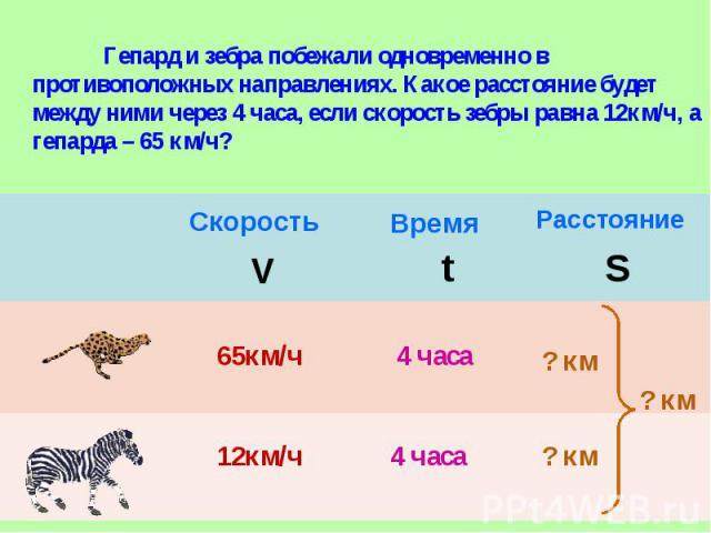 Гепард и зебра побежали одновременно в противоположных направлениях. Какое расстояние будет между ними через 4 часа, если скорость зебры равна 12км/ч, а гепарда – 65 км/ч?
