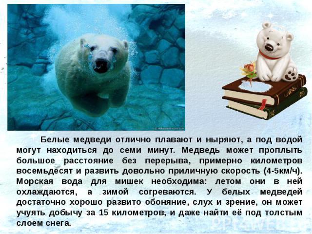 Белые медведи отлично плавают и ныряют, а под водой могут находиться до семи минут. Медведь может проплыть большое расстояние без перерыва, примерно километров восемьдесят и развить довольно приличную скорость (4-5км/ч). Морская вода для мишек необх…