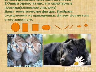 1.Каких домашних животных ты знаешь?2.Опиши одного из них, его характерные призн