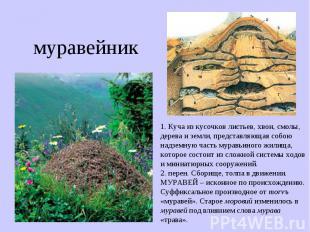 муравейник 1. Куча из кусочков листьев, хвои, смолы, дерева и земли, представляю