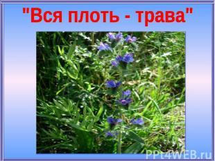 """""""Вся плоть - трава"""""""