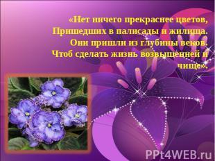 «Нет ничего прекраснее цветов,Пришедших в палисады и жилища.Они пришли из глубин