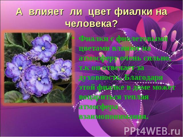 А влияет ли цвет фиалки на человека? Фиалки с фиолетовыми цветами влияют на атмосферу очень сильно, т.к он отвечает за духовность. Благодаря этой фиалке в доме может воцариться теплая атмосфера взаимопонимания.