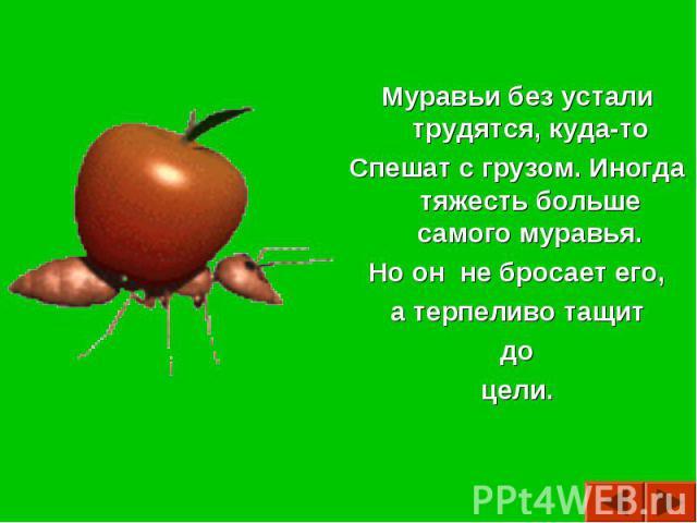 Муравьи без устали трудятся, куда-тоСпешат с грузом. Иногда тяжесть больше самого муравья.Но он не бросает его, а терпеливо тащит доцели.
