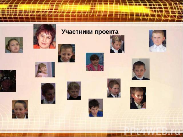 Участники проекта
