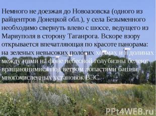 Немного не доезжая до Новоазовска (одного из райцентров Донецкой обл.), у села Б