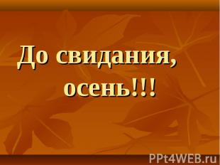 До свидания, осень!!!