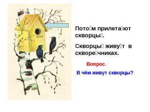 Потом прилетают скворцы. Скворцы живут в скворечниках.В чём живут скворцы?
