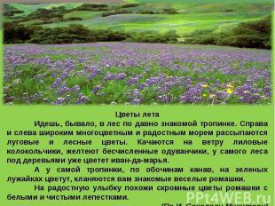 Цветы летаИдешь, бывало, в лес по давно знакомой тропинке. Справа и слева широки