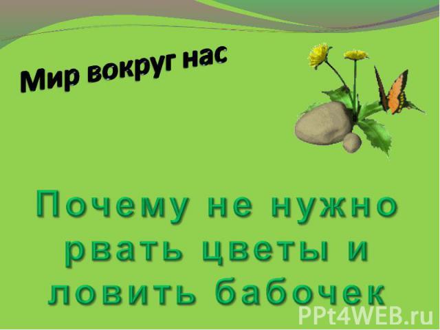 Мир вокруг нас Почему не нужно рвать цветы и ловить бабочек