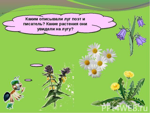 Каким описывали луг поэт и писатель? Какие растения они увидели на лугу?