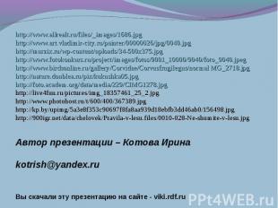 http://www.allrealt.ru/files/_images/1686.jpghttp://www.art.vladimir-city.ru/pai