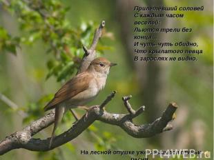 Прилетевший соловейСкаждым часом веселей:Льются трели без конца…Ичуть-чуть оби