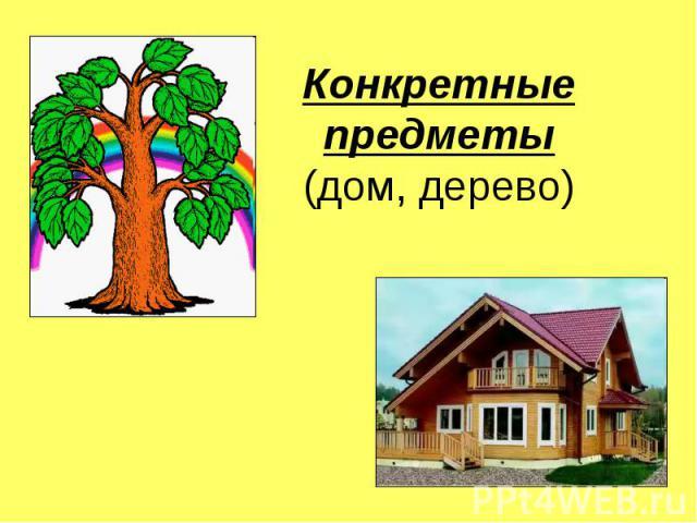 Конкретные предметы(дом, дерево)