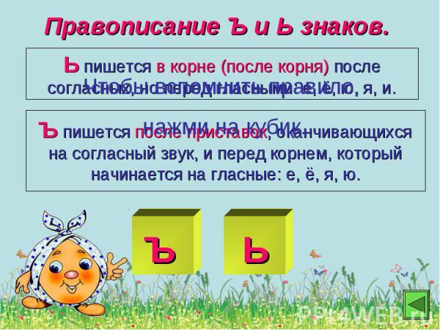 Правописание Ъ и Ь знаков.Ь пишется в корне (после корня) после согласных, но перед гласными: е, ё, ю, я, и.Ъ пишется после приставок, оканчивающихся на согласный звук, и перед корнем, который начинается на гласные: е, ё, я, ю.