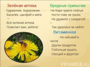 Зелёная аптека Одуванчик, подорожник, Василёк, шалфей и мята – Вся зелёная аптек