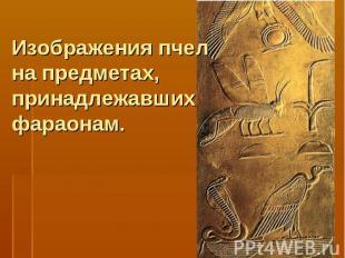 Изображения пчел на предметах, принадлежавших фараонам.