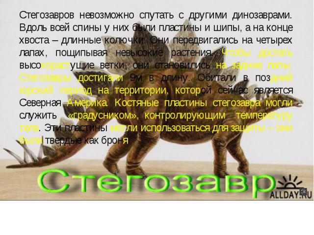 Стегозавров невозможно спутать с другими динозаврами. Вдоль всей спины у них были пластины и шипы, а на конце хвоста – длинные колючки. Они передвигались на четырех лапах, пощипывая невысокие растения. Чтобы достать высокорастущие ветки, они станови…