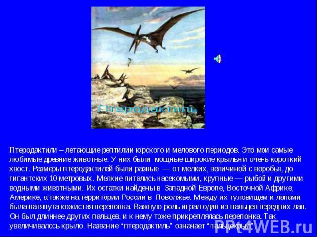 Птеродактили – летающие рептилии юрского и мелового периодов. Это мои самые любимые древние животные. У них были мощные широкие крылья и очень короткий хвост. Размеры птеродактилей были разные — от мелких, величиной с воробья, до гигантских 10 метро…