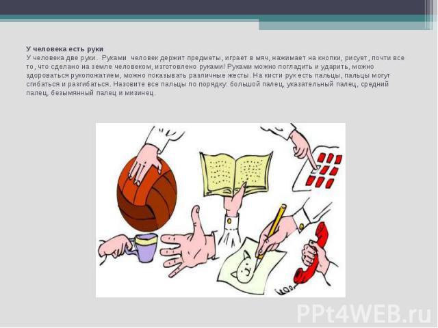 У человека есть рукиУ человека две руки. Руками человек держит предметы, играет в мяч, нажимает на кнопки, рисует, почти все то, что сделано на земле человеком, изготовлено руками! Руками можно погладить и ударить, можно здороваться рукопожатием, м…