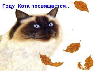 Году Кота посвящается…