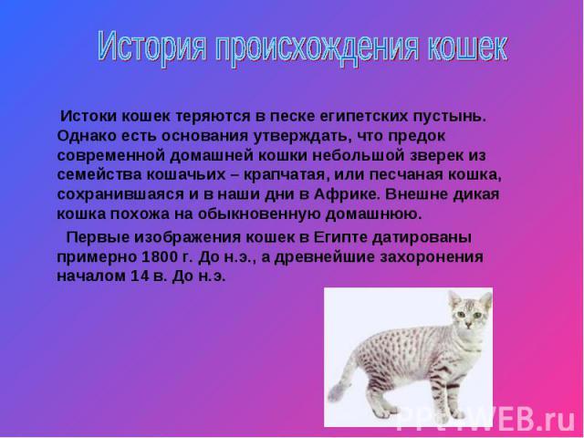 История происхождения кошек Истоки кошек теряются в песке египетских пустынь. Однако есть основания утверждать, что предок современной домашней кошки небольшой зверек из семейства кошачьих – крапчатая, или песчаная кошка, сохранившаяся и в наши дни …
