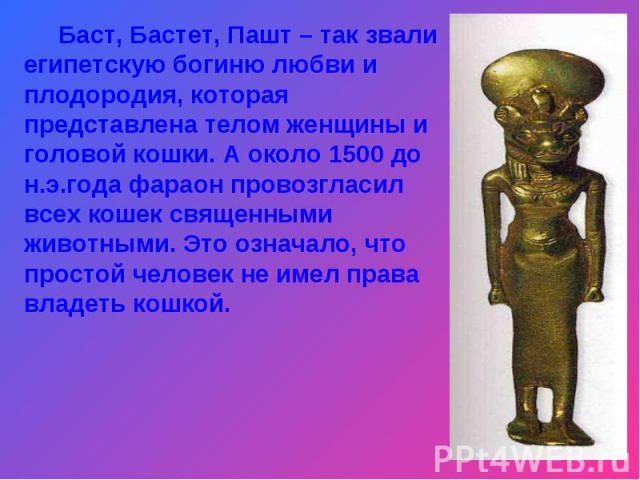 Баст, Бастет, Пашт – так звали египетскую богиню любви и плодородия, которая представлена телом женщины и головой кошки. А около 1500 до н.э.года фараон провозгласил всех кошек священными животными. Это означало, что простой человек не имел права вл…