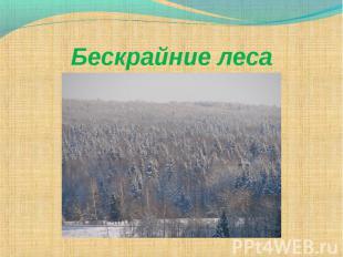 Бескрайние леса