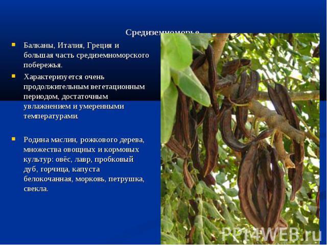 Средиземноморье. Балканы, Италия, Греция и большая часть средиземноморского побережья.Характеризуется очень продолжительным вегетационным периодом, достаточным увлажнением и умеренными температурами.Родина маслин, рожкового дерева, множества овощных…