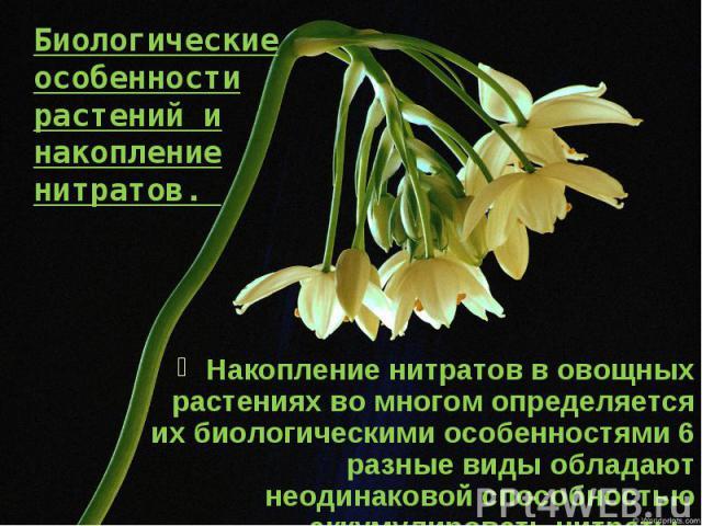 Биологические особенности растений и накопление нитратов. Накопление нитратов в овощных растениях во многом определяется их биологическими особенностями 6 разные виды обладают неодинаковой способностью аккумулировать нитраты.