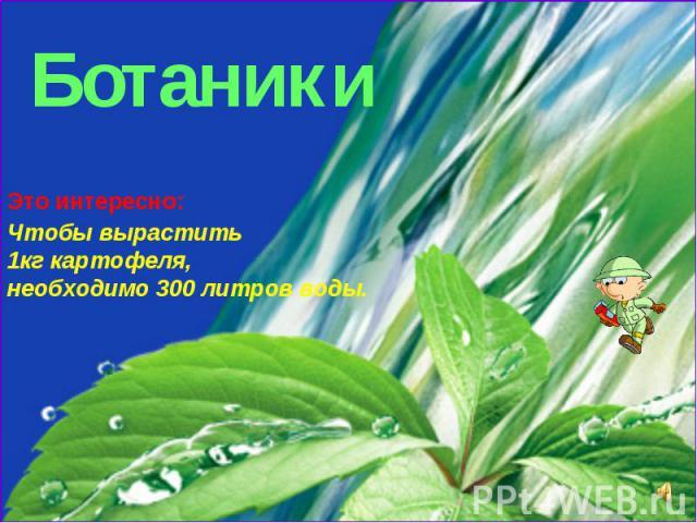 Ботаники Это интересно: Чтобы вырастить 1кг картофеля, необходимо 300 литров воды.