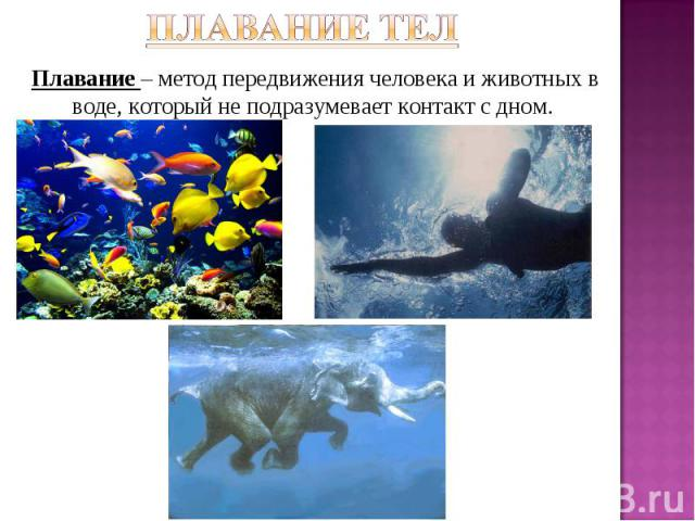 Плавание тел Плавание – метод передвижения человека и животных в воде, который не подразумевает контакт с дном.