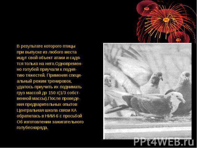 В результате которого птицыпри выпуске из любого местаищут свой объект атаки и садя-тся только на него.Одновремен-но голубей приучали к подня-тию тяжестей. Применяя специ-альный режим тренировок,удалось приучить их подниматьгруз массой до 150 г(1/3 …