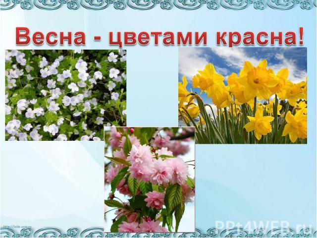 Весна - цветами красна!