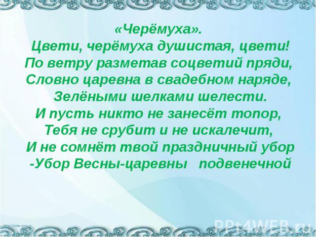 «Черёмуха». Цвети, черёмуха душистая, цвети!По ветру разметав соцветий пряди, Словно царевна в свадебном наряде, Зелёными шелками шелести.И пусть никто не занесёт топор, Тебя не срубит и не искалечит, И не сомнёт твой праздничный убор-Убор Весны-цар…