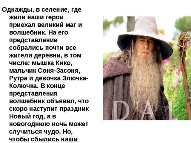 Однажды, в селение, где жили наши герои приехал великий маг и волшебник. На его представление собрались почти все жители деревни, в том числе: мышка Кико, мальчик Соня-Засоня, Рутра и девочка Злючка-Колючка. В конце представления волшебник объявил, …