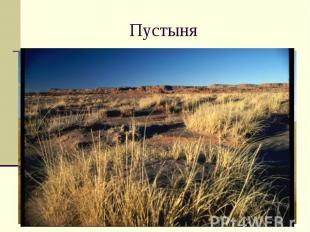 Пустыня Пустыня в республике Тыва