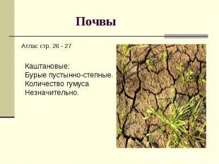 Почвы Атлас стр. 26 - 27Каштановые;Бурые пустынно-степные.Количество гумуса Незн