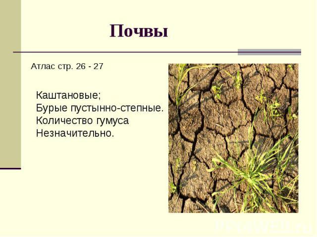 Почвы Атлас стр. 26 - 27Каштановые;Бурые пустынно-степные.Количество гумуса Незначительно.