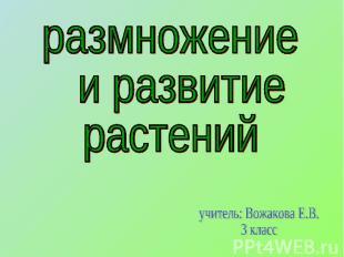 размножение и развитиерастенийучитель: Вожакова Е.В.3 класс