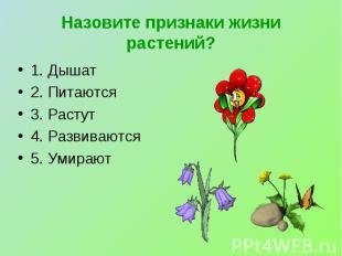 Назовите признаки жизни растений? 1. Дышат2. Питаются3. Растут4. Развиваются5. У