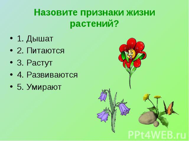 Назовите признаки жизни растений? 1. Дышат2. Питаются3. Растут4. Развиваются5. Умирают