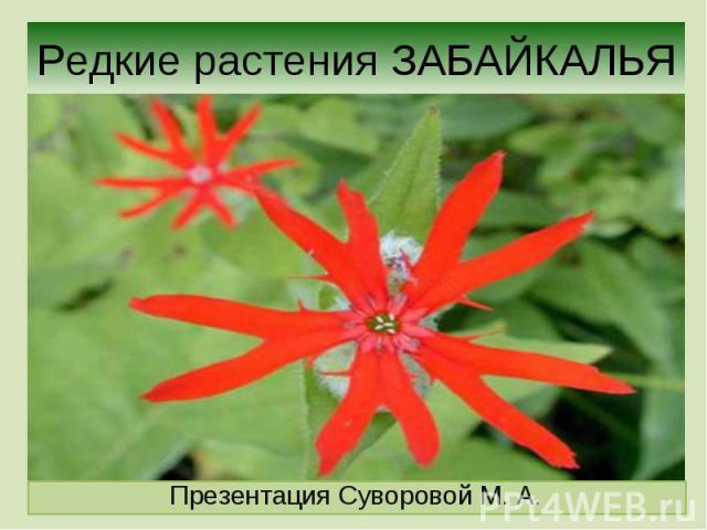 Реферат растения забайкальского края в красной книге 6826