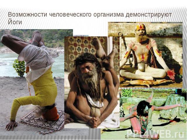 Возможности человеческого организма демонстрируют Йоги