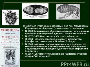 C 1662 был куратором экспериментов при Лондонском Королевском обществе (с момент