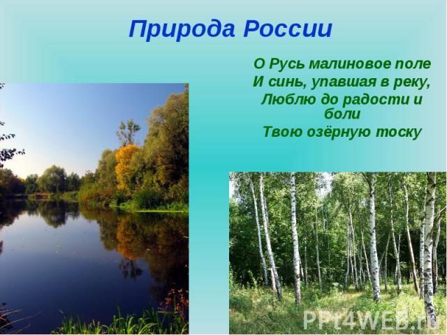 Природа России О Русь малиновое полеИ синь, упавшая в реку,Люблю до радости и болиТвою озёрную тоску