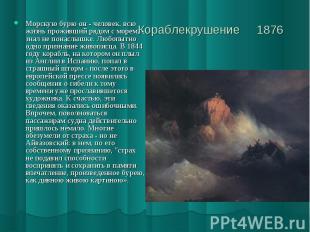 Кораблекрушение 1876 Морскую бурю он - человек, всю жизнь проживший рядом с море