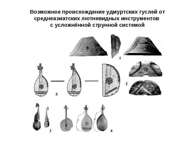Возможное происхождение удмуртских гуслей от среднеазиатских лютневидных инструментов с усложнённой струнной системой